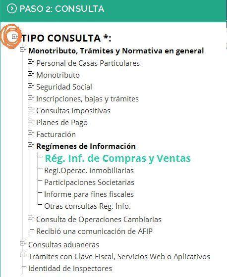 Error_de_Tipicacion_en_Gestion_de_consultas_Web_AF
